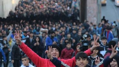amed miting